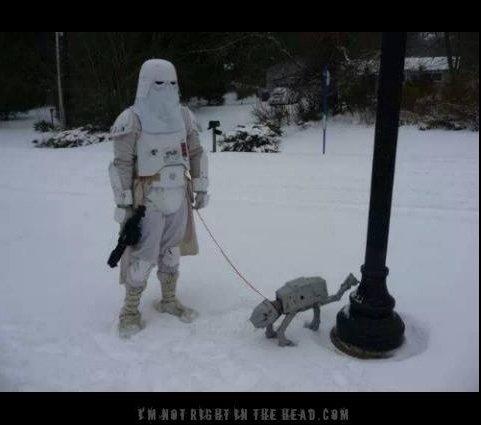 481x425xStorm-Trooper-Dog-copy_jpg_pagespeed_ic_BuB_zdLEzO