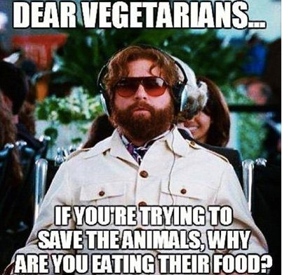 Dear-Vegetarians-copy_jpg,qresize=402,P2C392_pagespeed_ce_h2Nfm-4MZF