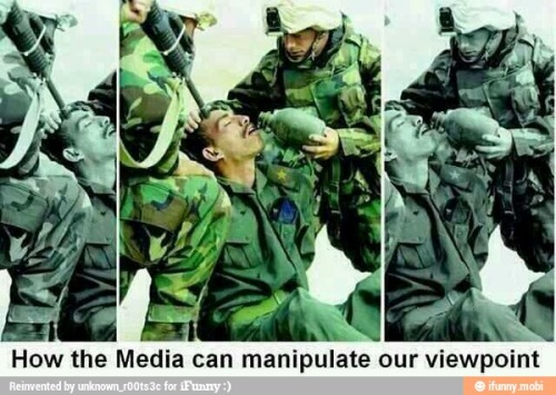 Media-Manipulation Bookworm