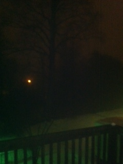 snow fog2