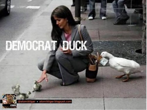 Democrat-Duck-copy_jpg,qresize=580,P2C435_pagespeed_ce_o6Mfg6vesKmvAFAUbUEe