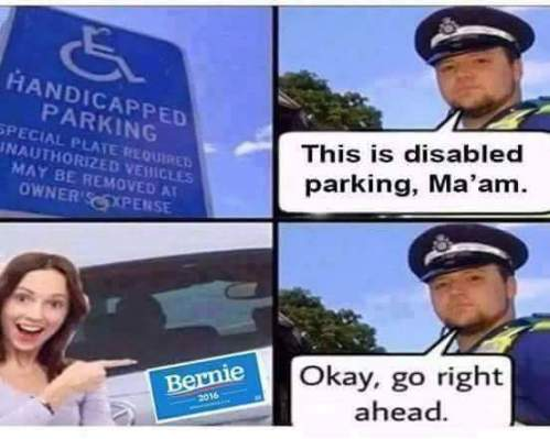 Bernie-Disable